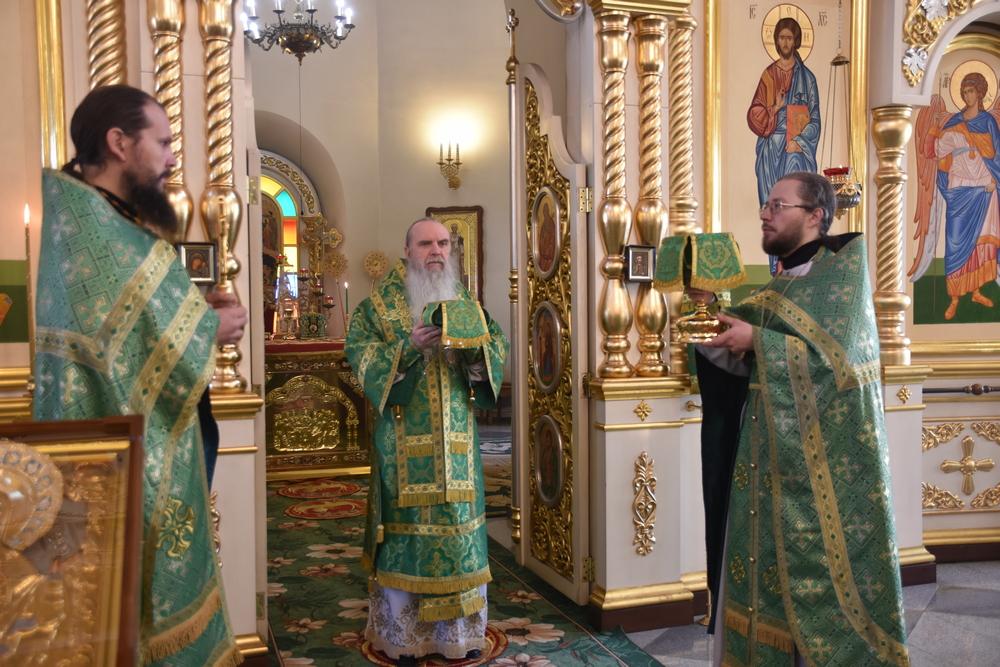 В день памяти прп. Илариона Великого епископ Мефодий совершил Литургию