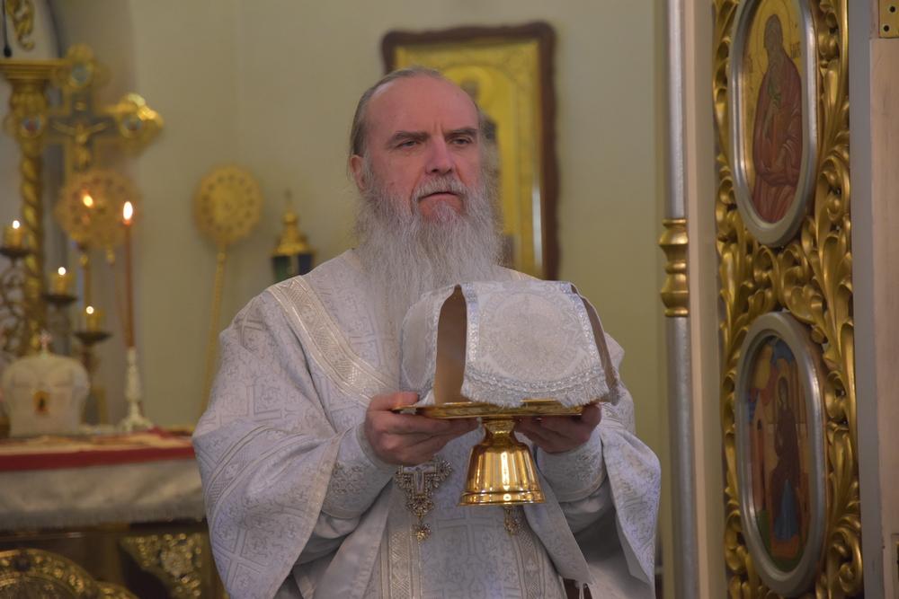 Епископ Мефодий совершил Божественную литургию в Рождественский сочельник
